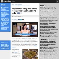 Psychedelic drug found that regenerates pancreatic beta cells - Birmingham science news