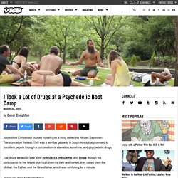 I Took a Lot of Drugs at a Psychedelic Boot Camp