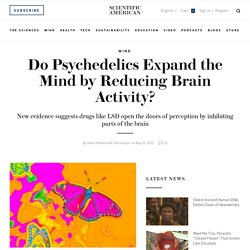 Do Psychedelics Expand the Mind by Reducing Brain Activity?