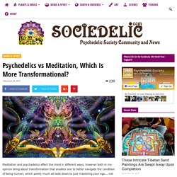 Psychedelics vs Meditation, Which Is More Transformational?