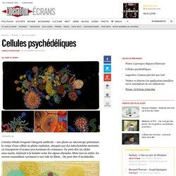 Cellules psychédéliques