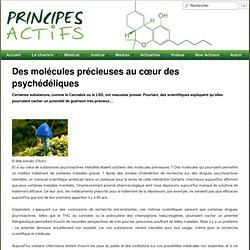 Des molécules précieuses au cœur des psychédéliques