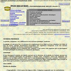 infirmiere formation infirmier pathologie psychiatrie adulte maladie psychiatrique - Aurora