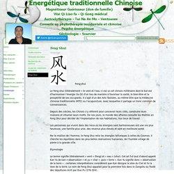 Feng Shui - Magnétiseur Guérisseur Wai qi Liao Fa Reiki Tuina Qi Gong curatif Géobiologie de l'habitat Feng Shui sourcier MTC Energétique Chinoise Acupuncture Tuina Energetique préventive Auriculothérapie Diététique Psychoénergétique Magnetiseur Acupuncte