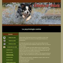 La psychologie et le comportement du chien
