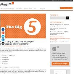 Qu'est-ce que le big five en psychologie et psychométrie? - AtmanCo