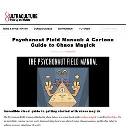 Psychonaut Field Manual: A Cartoon Guide to Chaos Magick