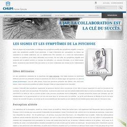 Psychose : signes et symptômes