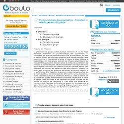 Psychosociologie des organisations - formation et développement du groupe