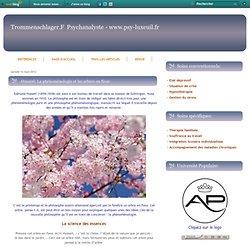 -Husserl: La phénoménologie et les arbres en fleur