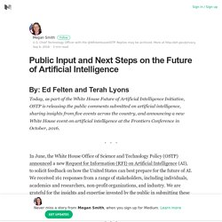 Public Input and Next Steps on the Future of Artificial Intelligence