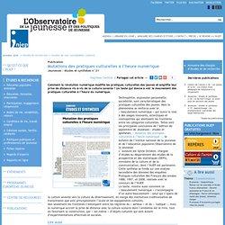 Publication, Mutations des pratiques culturelles à l'heure numérique, 11. Jeunesses : études et synthèses n°21, Injep