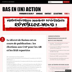 Le décret de fusion est en cours de publication : les élections aux CAP pour les AB et les BAS reportées « BAS en action