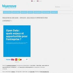 Publication du livre blanc «Open Data : quels enjeux et opportunités pour l'entreprise ?»