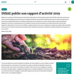 INRAE 25/06/20 INRAE publie son rapport d'activité 2019