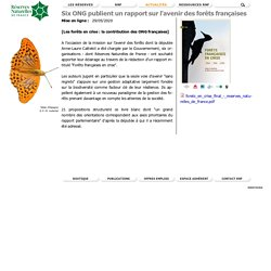 RESERVES NATURELLES 29/05/20 Six ONG publient un rapport sur l'avenir des forêts françaises