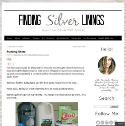 Pudding Shots! | Finding Silver Linings