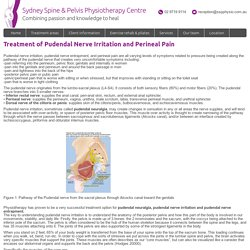 Pudendal Nerve Irritation and Perineal Pain