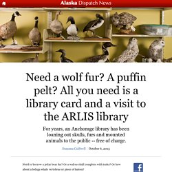 Need a wolf fur? A puffin pelt? All you need is a library card and a visit to the ARLIS library