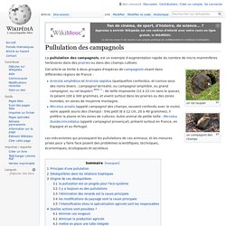 WIKIPEDIA - Pullulation des campagnols.
