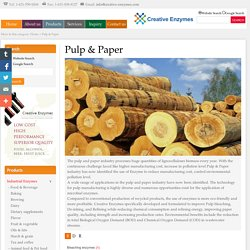Pulp & paper-Creative enzymes