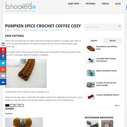 Pumpkin Spice Crochet Coffee Cozy - B.hooked Crochet