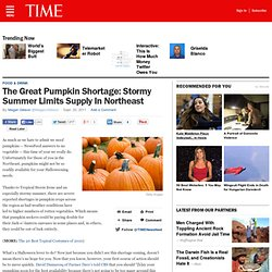 The Great Pumpkin Shortage: Stormy Summer Limits Supply In Northeast