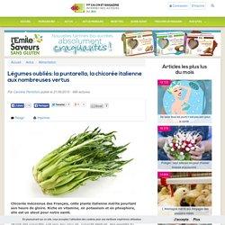 Légumes oubliés: la puntarella, la chicorée italienne aux nombreuses vertus
