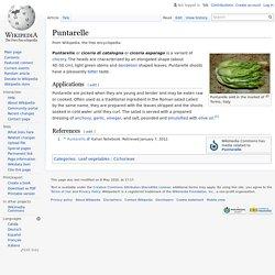 Puntarelle - Wikipedia