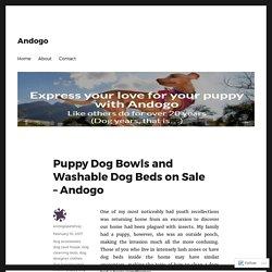 Puppy Dog Bowls and Washable Dog Beds on Sale – Andogo – Andogo