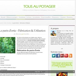 Le purin d'ortie – Fabrication & Utilisation