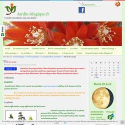 Purin de sauge - Jardin-Magique.fr - jardiner malin