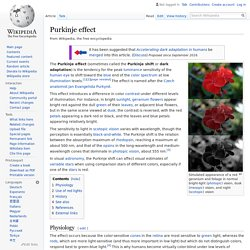 Purkinje effect - Wikipedia
