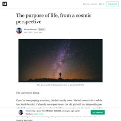The purpose of life, from a cosmic perspective – Michael Marvosh