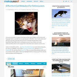 8 Purrfect Cat Websites For Feline Lovers