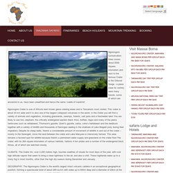 PUSH NEW YORK AFRICA SAFARIS - Ngorongoro