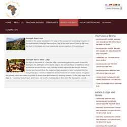 Accomodation Service in Serengeti