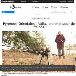FRANCE 3 14/01/18 Pyrénées-Orientales : Attila, le drone tueur de frelons