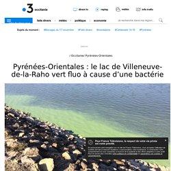Pyrénées-Orientales : le lac de Villeneuve-de-la-Raho vert fluo à cause d'une bactérie