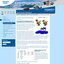 Qu'est-ce que l'adsorption? Chemviron Carbon