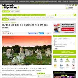 Qu'on se le dise : les Bretons ne sont pas celtes - 25/11/2014