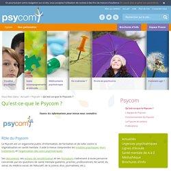 Qu'est-ce-que le Psycom ?