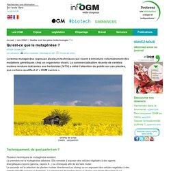 INFOGM - JUILLET 2014 - Qu'est-ce que la mutagenèse ?