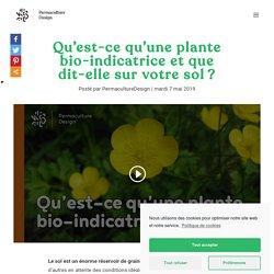 Qu'est-ce qu'une plante bio-indicatrice et que dit-elle sur votre sol?
