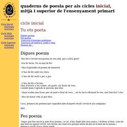 Quaderns de poesia per als cicles inicial, mitjà i superior de primària- Magisteri Teatre-Mag Poesia