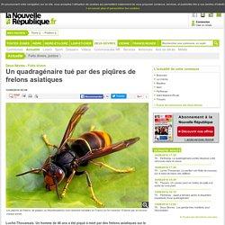 NOUVELLE REPUBLIQUE 12/08/16 DEUX SEVRES - Un quadragénaire tué par des piqûres de frelons asiatiques