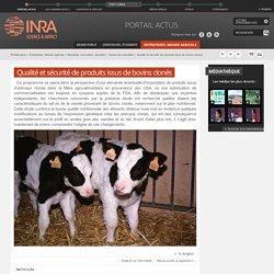 INRA 15/01/08 Qualité et sécurité de produits issus de bovins clonés
