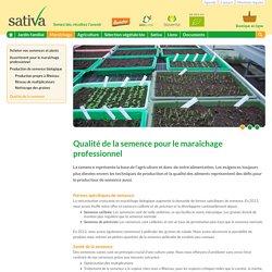 Qualité de la semence - Maraîchage - Sativa Rheinau