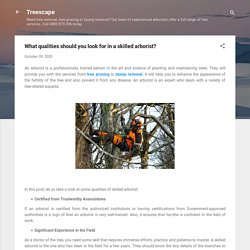 What qualities should you look for in a skilled arborist?