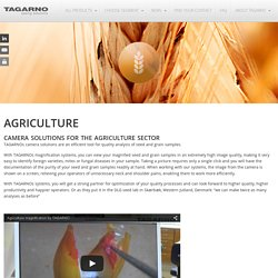 Quality analysis of seed and grain samples - Tagarno